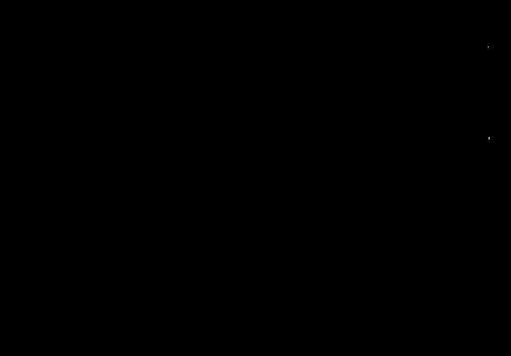 Vitellino